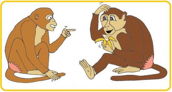 Зеркальные нейроны в работе у приматов