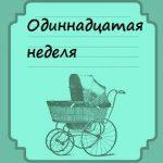Одиннадцатая неделя беременности