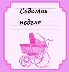 Седьмая неделя беременности