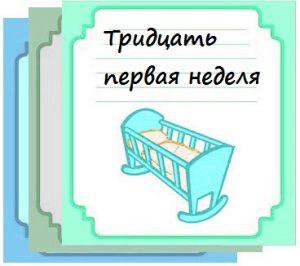 Тридцать первая неделя беременности