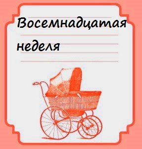 Восемнадцатая неделя беременности