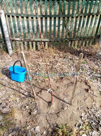 Дом посадил, дерево вырастил, ребенка построил