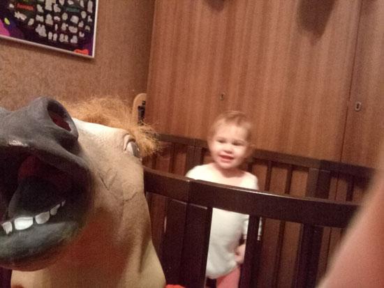 Мой папа - конь