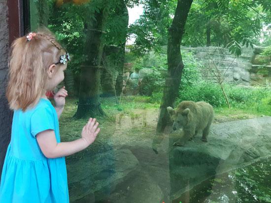 Маша и медведь в реальной жизни
